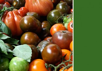 tomates-borough-market-(leticia-massula-para-cozinha-da-matilde)