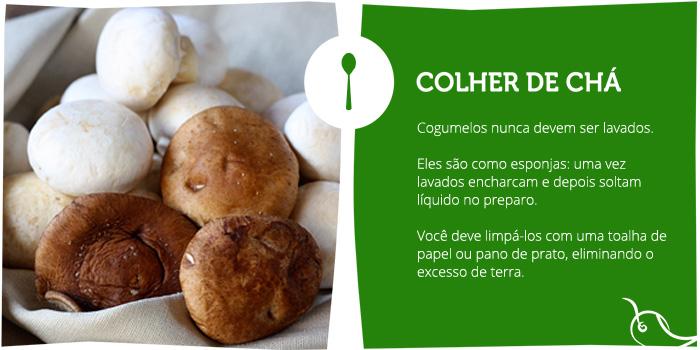 colher-de-cha-cogumelo-post