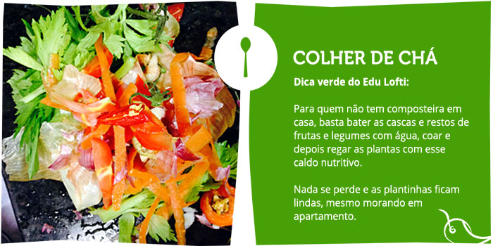 colher-de-cha-dica-verde-do-edu-lofti-post