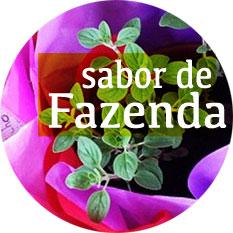 recomendacoes-sabor-de-fazenda-banner-(leticia-massula-para-cozinha-da-matilde)