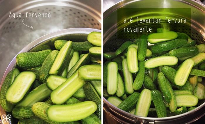 passo-a-passo-pickles-de-pepino-feito-em-casa-DIY-(leticia-massula-para-cozinha-da-matilde)