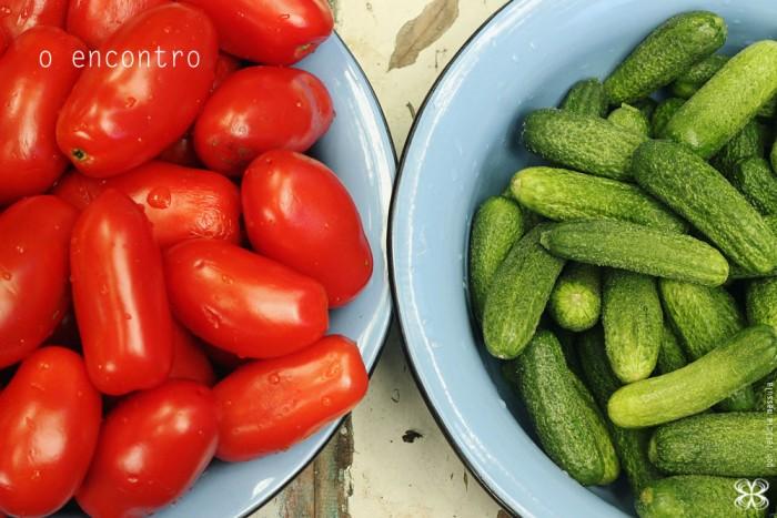 tomates-e-pepinos-(leticia-massula-para-cozinha-da-matilde)