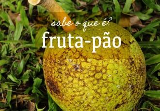 banner-sabe-o-que-e--fruta-pao-(leticia-massula-para-cozinha-da-matilde)