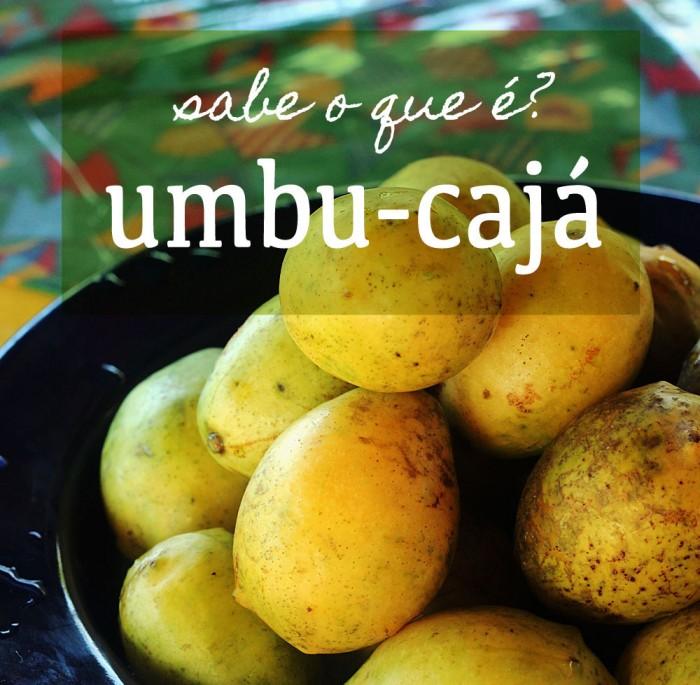 banner-sabe-o-que-e--umbu-caja-(leticia-massula-para-cozinha-da-matilde)