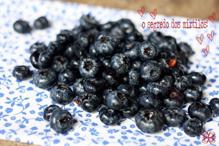 gelatina-natural-de-mirtilos-o-segredo-(leticia-massula-para-feed)